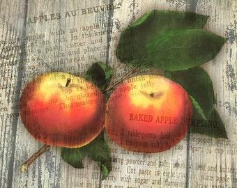 Apple Dumpling Giclee Art Print. Maiden's Blush Fruit with Antique Recipes. Great for Autumn Seasonal Decorating, Thanksgiving, Halloween.