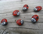 Ladybug Magnet - Mini Hand Painted Lake Superior Basalt Ladybug Magnets - sold separately
