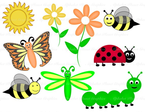 Spring ladybug caterpillar butterfly dragon fly by ...