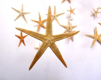 Sea Stars/Starfish mobile/pearls,hanging decoration/ocean,sea/baby-neutral-boy, girl/Wedding, party decoration,nautical, beach,photo prop