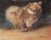 Original Oil Painting 8 x 10 Unframed Pomeranian by Peggy Marlow