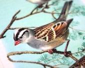 Upcycled Big Fatty Bookmark Sparrow Birds