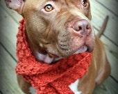 Dog Scarf Orange Hand Knit for Large Breeds