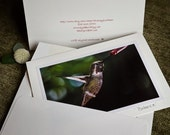 photography handmade card eco friendly paper Hummingbird photo 5x7 card bird in flight StrongylosPhoto