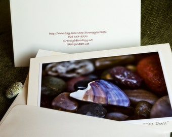 sea shell photo card, 5x7 card matching envelope, ready to ship eco friendly recycled paper - StrongylosPhoto fine art photography