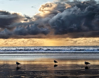 Beach Decor sunset and seagulls Beach Photo, dark and stormy clouds Oceanscape, California Photography, StrongylosPhoto