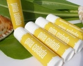 Lip Balm Tube - PINA COLADA - all season lip conditioner