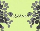Reserved for Mikki