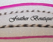Grizzly and Hot Pink Extensions-Feather Hair Extensions-Black and White Grizzly Mix Feather Hair Extensions with Micro Beads