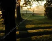 Sunrise Pathway of Light and Shadow Photograph 8 x 10 inch by J. L. Fleckenstein