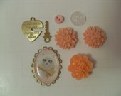 Orange cabochon lot