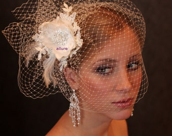 Fabulous BIRD CAGE VEIL , wedding hat, bridal hat. Amazing fascinator, hair flowers, lace, pearls, crystals, feathers.