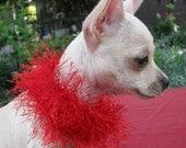 Red Hot - Little DOG or CAT Soft Collar or Bracelet