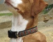 "Dog Collar 1"" - Autumn Harvest"