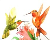 Couple gift-Humming-bird-Green and Orange-Spring-Summer Time-Original Watercolor  - NOT A PRINT - 8x11inch - A4