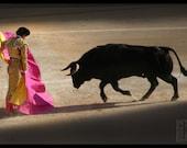 Corrida in the shadows - Signed photo 8 x 12 - BOGO sale - bullfight torero matador bull pink yellow gold bullfighting