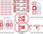 Carnival Birthday Party Printable Decorations - Customized Files for Circus Party Theme