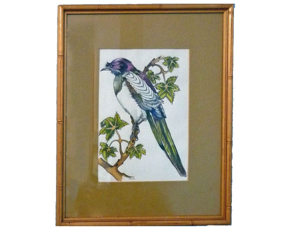 """COLORFUL mid century WATERCOLOR of a BIRD - Bamboo Frame - Signed """"Steffi"""" - Free Shipping"""