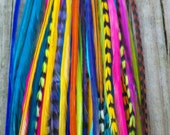 SALE - 25 for 25 Bucks - Extra Long - Feather Hair Extensions - Professional Salon Grade - Assorted Colors