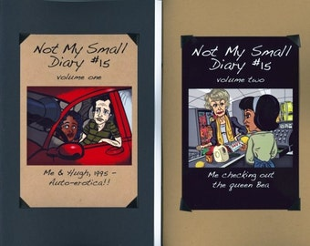 Not My Small Diary zine #15 - 15 Minutes of Fame/Brushes With Celebrity - autobio comics anthology