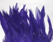 10 Bright Purple Hackle Feathers for Crafts or Hair Extensions- 13