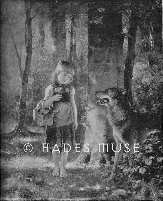 Big Bad Wolf -Here Comes Little Red Riding Hood-Woods-Forest-Grandmother's House-1894 Antique Vintage Art Print-Gothic Fairy Tale Picture