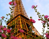 Eiffel Tower In Spring - 8x10- Fine Travel Photograph