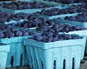 Blueberries Kitchen Art/Home Decor - True Blue - Original Fine Art Photograph - 5 x 7 Print
