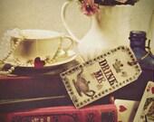 Alice in Wonderland, home decor, shabby chic, drink me, original fine art photograph, 8x10 Print, metallic finish