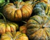 Pumpkins, Home Decor, Orange, green, farmhouse, rustic, kitchen, food, original fine art photograph, 8x10 print