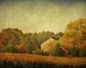 Wall Art, Autumn, Fall, Rustic, barn, country, farmhouse, blue, gold, home decor, original fine art photograph, 5x7 print, metallic finish