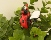 Plant Stake of Lady Bug - Reading Book