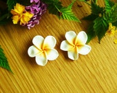Special Offer - NEW Huge Pure White Hawaii Aloho Holiday Resort Flower Stud Clip On Earrings