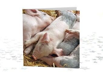 piglets greetings card (Blank)