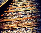 The Journey- New Orleans Train Tracks- 5x7 Photograph- Golden Colors