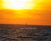 Sail Boat on the Horizon - 13x19 Archival Satin Print