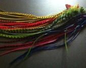 50 FEATHER EXTENSIONS red, yellow, green, sapphire blue, merlot - beautiful