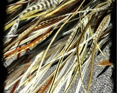 50 FEATHER MYSTERY PACK - 50 feather extensions of our choice & 25 beads - naturals and colors
