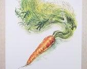 A4 Print - Carrot Study