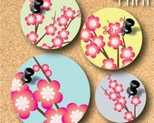 Cherry blossom-Printable 1 inch round digital collage sheet in Letter size paper-RD10013
