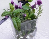 Lavender and Peppermint headache roll-on