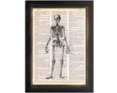 The Skeleton - Printed on Beautifully Upcycled Vintage Dictionary Paper - 8x10.5 - Anatomy Art Print