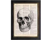 The Skull - Anatomy Art Print on Vintage Dictionary Paper - 8x10.5