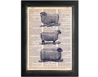 3 Farm Sheep printed on Recycled Vintage Dictionary Paper - 8x10.5