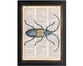 Tan & Light Blue Beetle Bug - Insect Art Printed on Vintage Dictionary Paper - 8x10.5