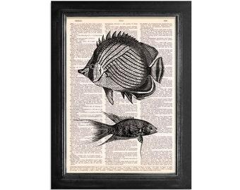 Reef Fish - Ocean Life Series - Marine Life Print on Vintage Dictionary Paper - 8x10.5