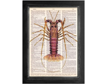 The Spiny Lobster - Ocean Life - Print on Vintage Dictionary Paper - 8x10.5