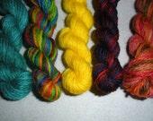 Set of 5 Mini-Skeins of Sock Yarn - Item SY21