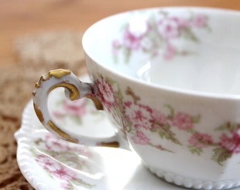 Antique Limoges Elite Cup & Saucer French Pink Roses 1890s