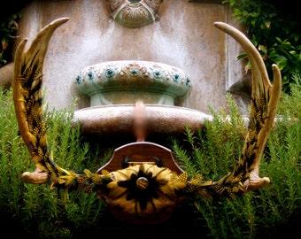 "SALE - Artistic Moose Skull - Title: ""The Majestic Moose"""
